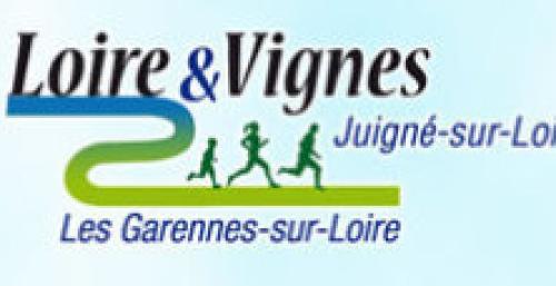 Trail loire et vignes2